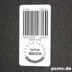 PE_5025_L3: Das DGUV-V3...